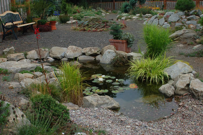 Water feature rock garden wild ginger farm for Rock ponds designs